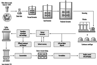 Ilo content manager diagram of a fermentation process phc010f3 nvjuhfo Image collections